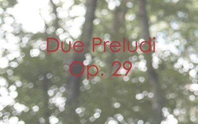 Due Preludi Op. 29