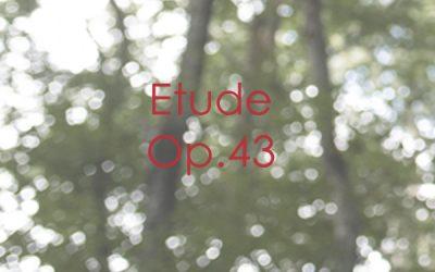 Etude Op. 43