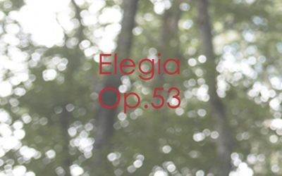 Elegia Op. 53