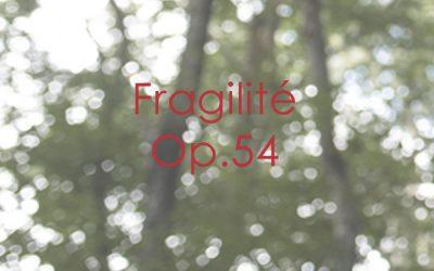 Fragilité Op. 54